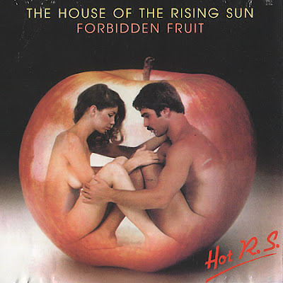 Hot RS - House Of The Rising Sun & Forbidden Fruit (2 Albums on 1 CD) 1978 disco rock classic \