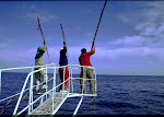 """Un autre """"Regard sur la Pêche et l'Aquaculture"""""""