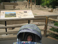 First trip to the zoo