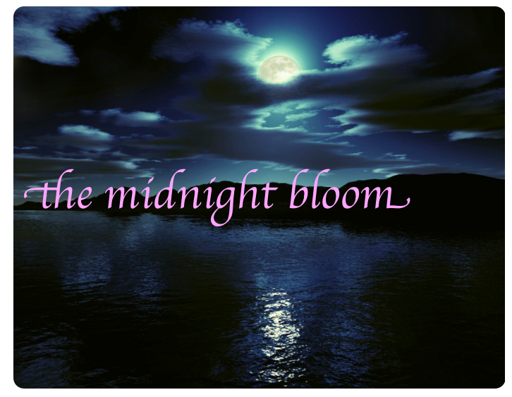 The Midnight Bloom