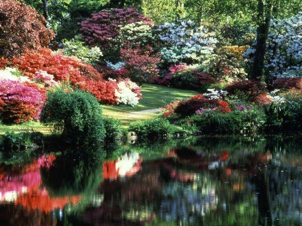 God\'s Garden