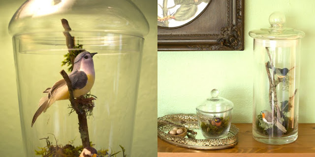 Install happy little fake birds in said apothecary jars along with some