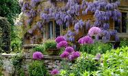 Magnifique  Jardin ...