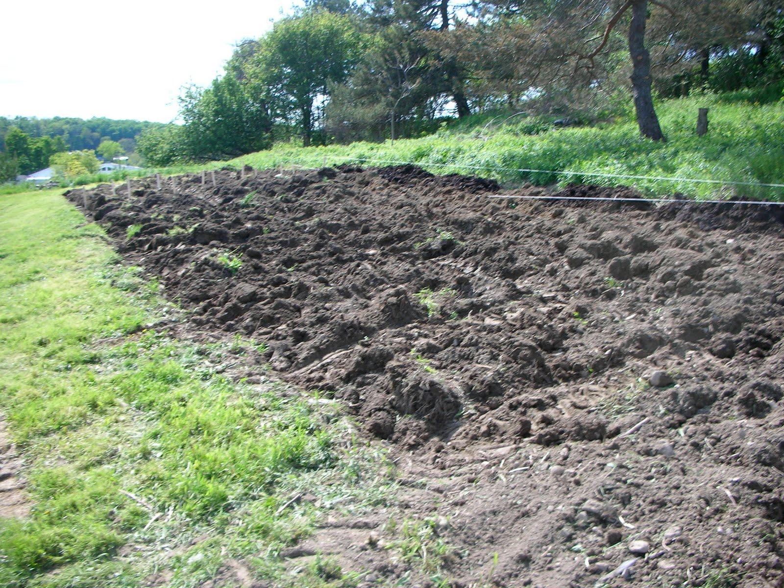 Clawhammer Farm