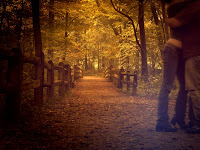 boy holding girl in arms on a road or path in lovely forest classic photograph