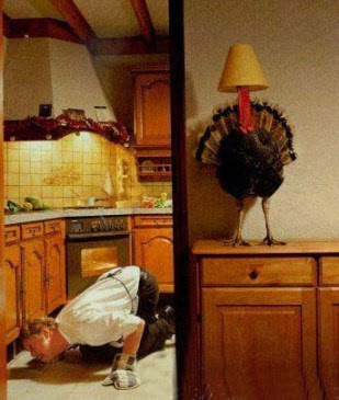 Thanksgiving Funny Pic