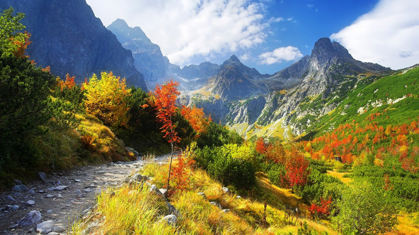 http://4.bp.blogspot.com/_rOVSEI0eaOM/TO0fLMC8a8I/AAAAAAAAB48/ot7bylyrvmk/s1600/thanksgiving_autumn_wallpaper_1366x768.jpg
