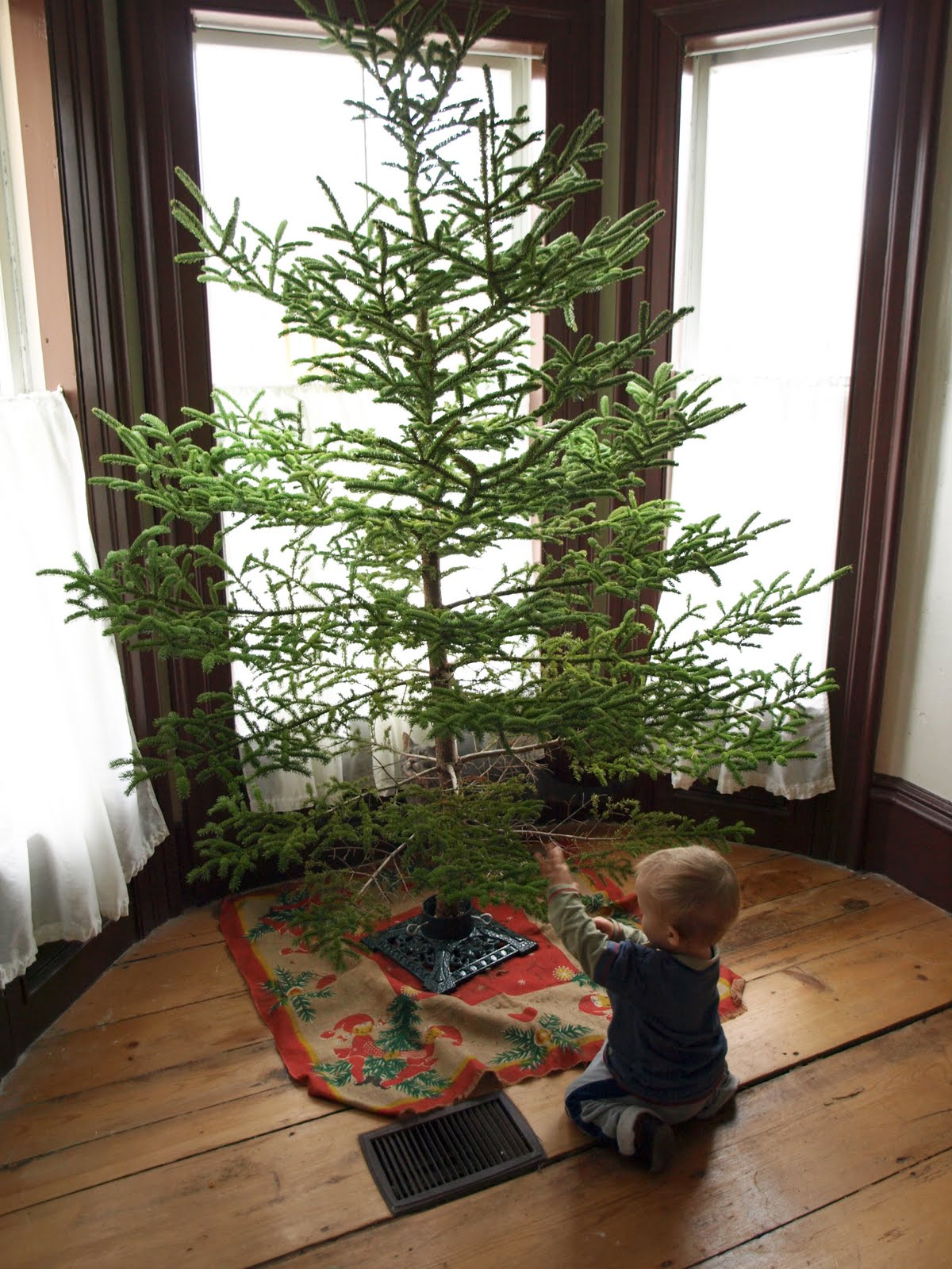 Into the sleeping forest rockin around christmas tree