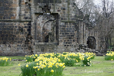 Kirkstall Abbey Flowers