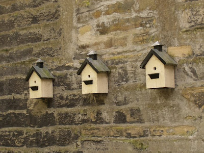 Bird Houses Haworth