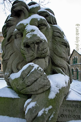 Lion Winter Saltaire Yorkshire