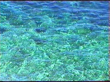 Las maravillas del agua del mar para tu salud