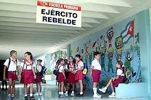 Educação Democrática II: