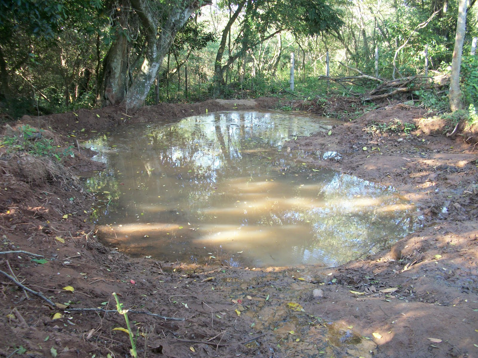 Nach paraguay auswandern und leben auf der farm kleiner for Fische kleiner teich