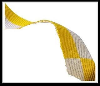 fe5e963a4a09 Étant ceinture blanche de karaté shotokan depuis septembre, j ai obtenu  cette ceinture bicolore au terme d un premier examen.
