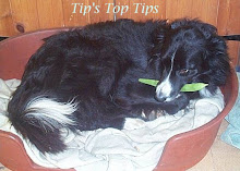 Tip's Top Tips