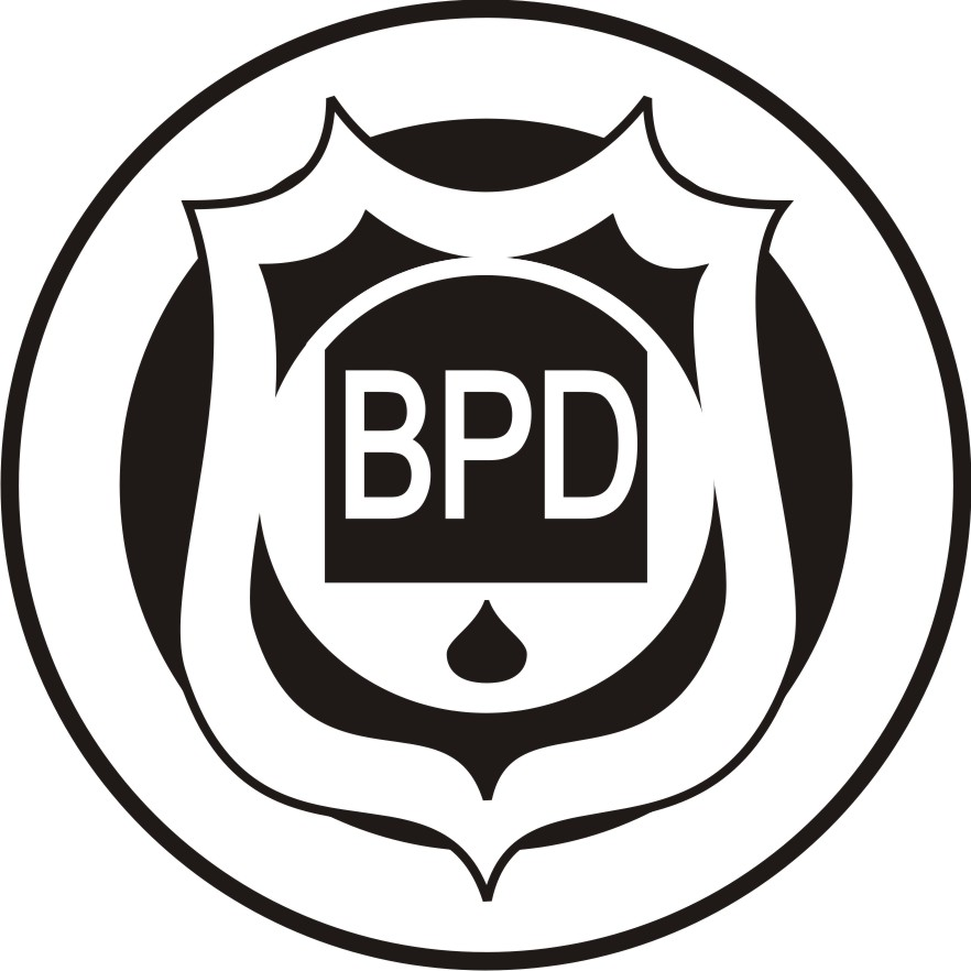 Image result for download logo bpd desa