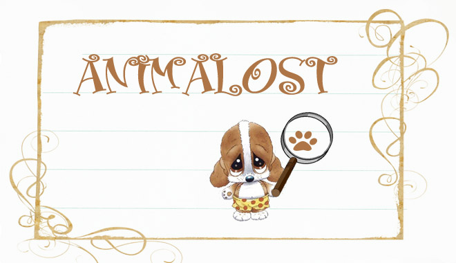 Animalost