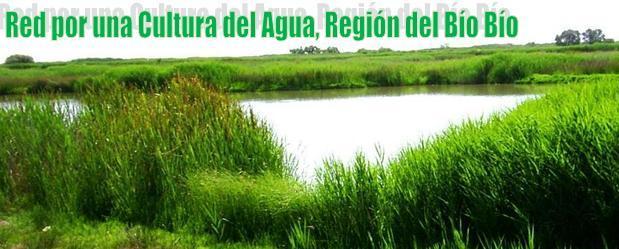 Red por una Cultura del Agua