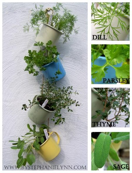 If I Could Hanging Coffee Cup Herb Garden