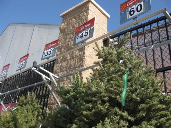 Durango Texas: Walking A Wal-Mart Parking Lot With #23, Oregon ...