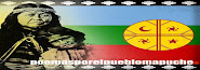 Poemas por el pueblo mapuche