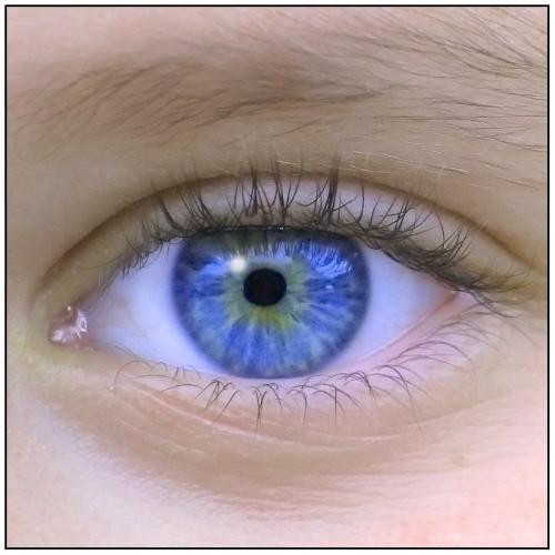 Curiosidades sobre el ojo