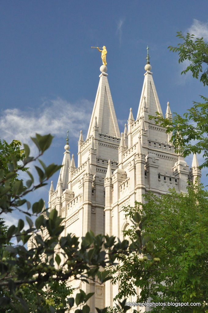 mormon lake buddhist personals Find women seeking men listings on oodle classifieds join millions of people using oodle to find great personal ads don't miss what's happening in your neighborhood.