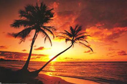 Name : Sun Set