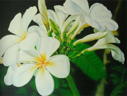 Name : Bouquet of Lantom (White Leelawadee)