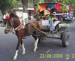HUT RI Naik Kuda Bersama Anak TK