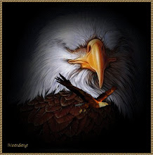 Aqueles que esperam no Senhor renovam as suas forças. Voam alto como águias...  Is 40.31