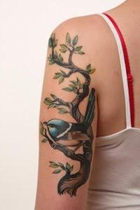 fairy wren tattoo. Black Bedroom Furniture Sets. Home Design Ideas