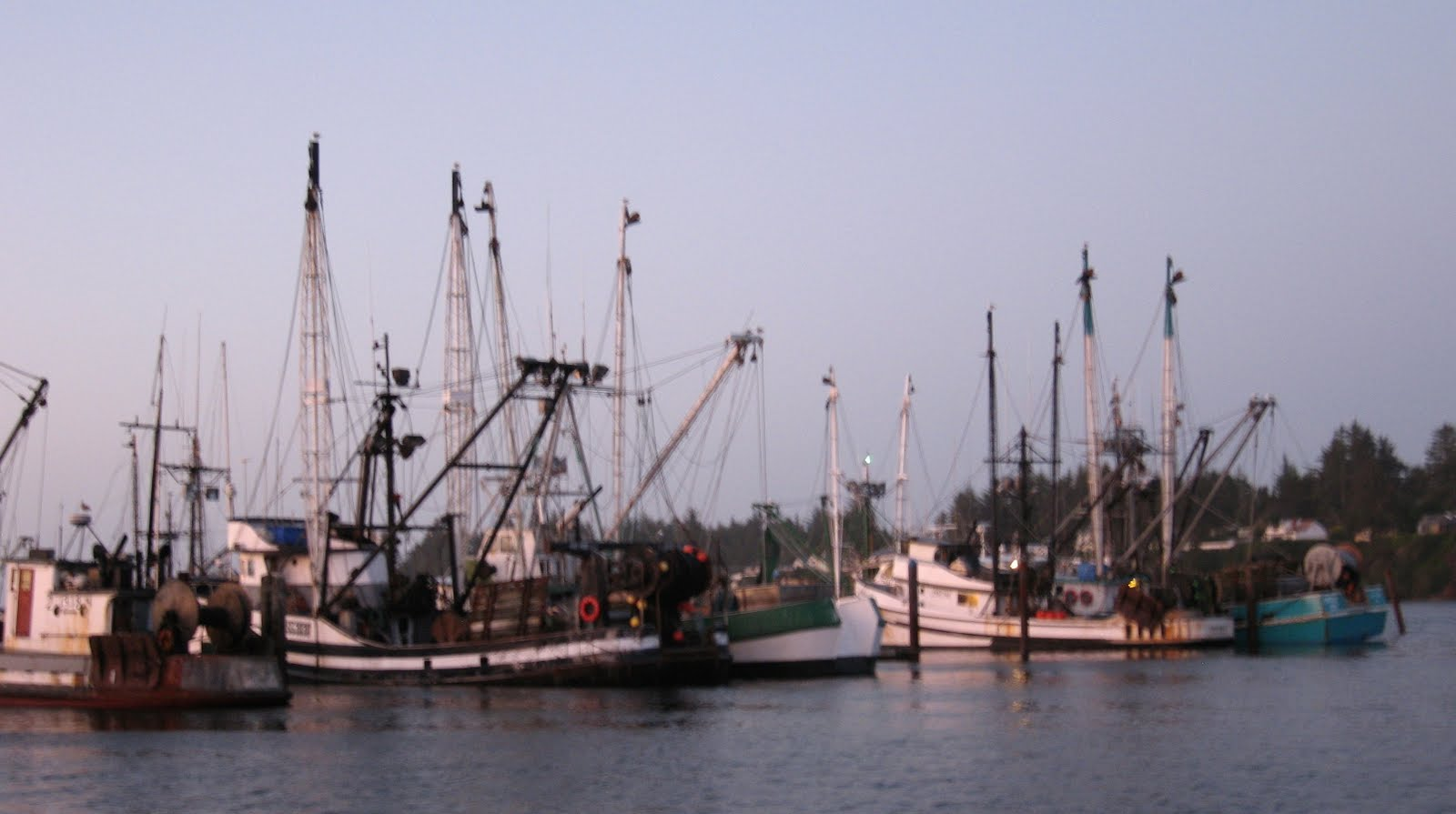 The adventures of ka 39 sala neah bay to coos bay august 15 for Coos bay fishing