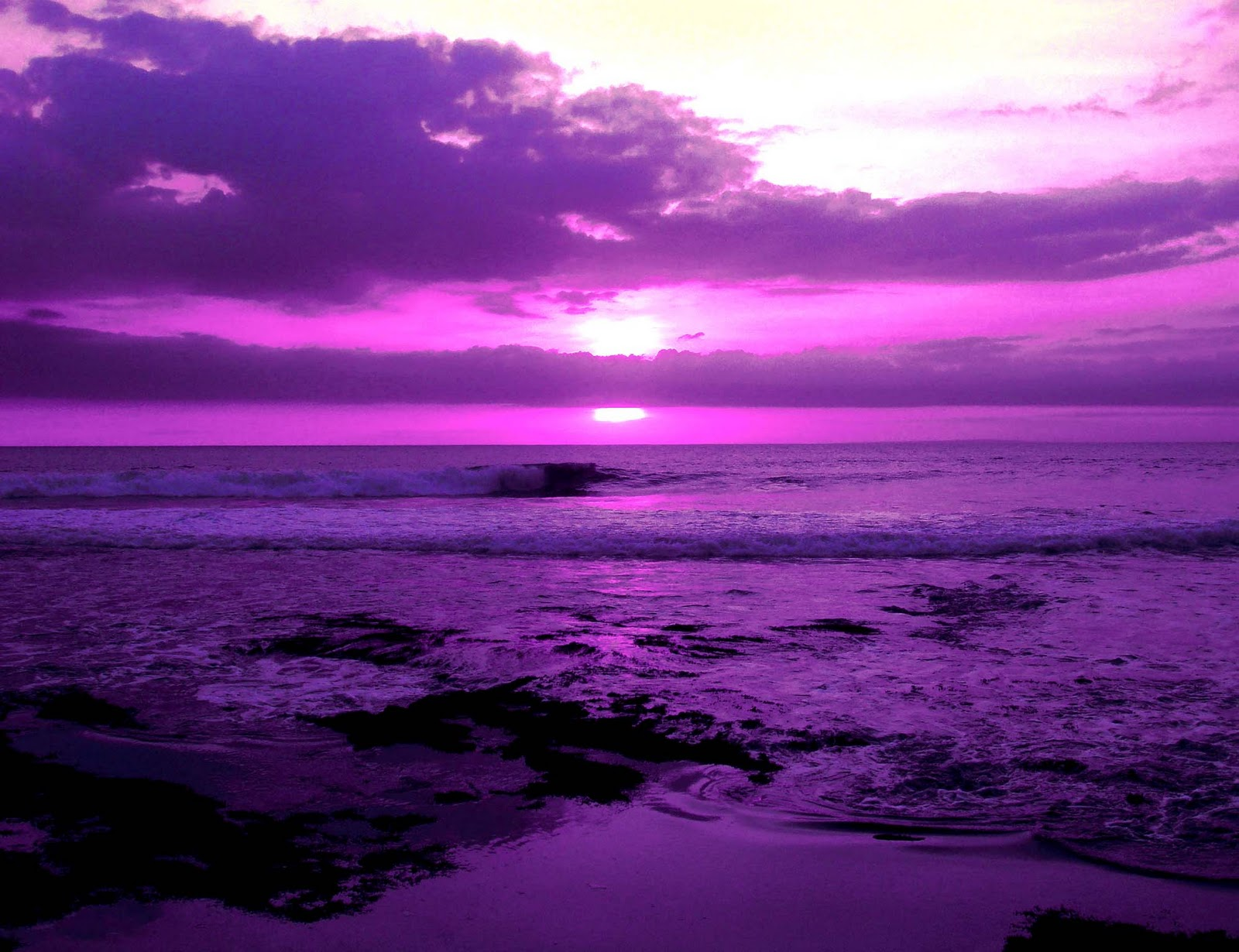 free download pretty purple - photo #24