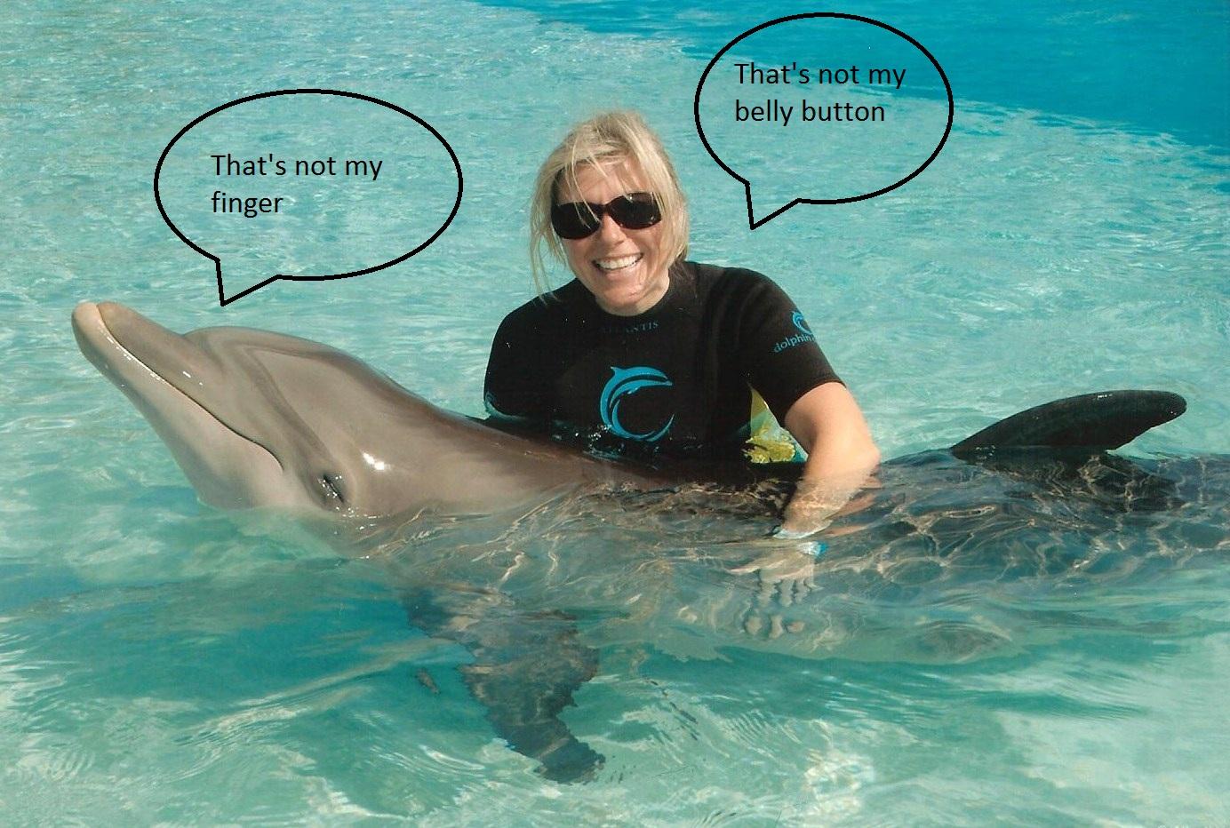 http://4.bp.blogspot.com/_rYrvQgT_I7c/TPmfWoW7xwI/AAAAAAAAA6A/w4o_nEBiiJw/s1600/Dolphin%2B2%2Bdirty.jpg