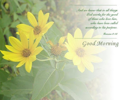 Good Morning Text Messages & GM SMS