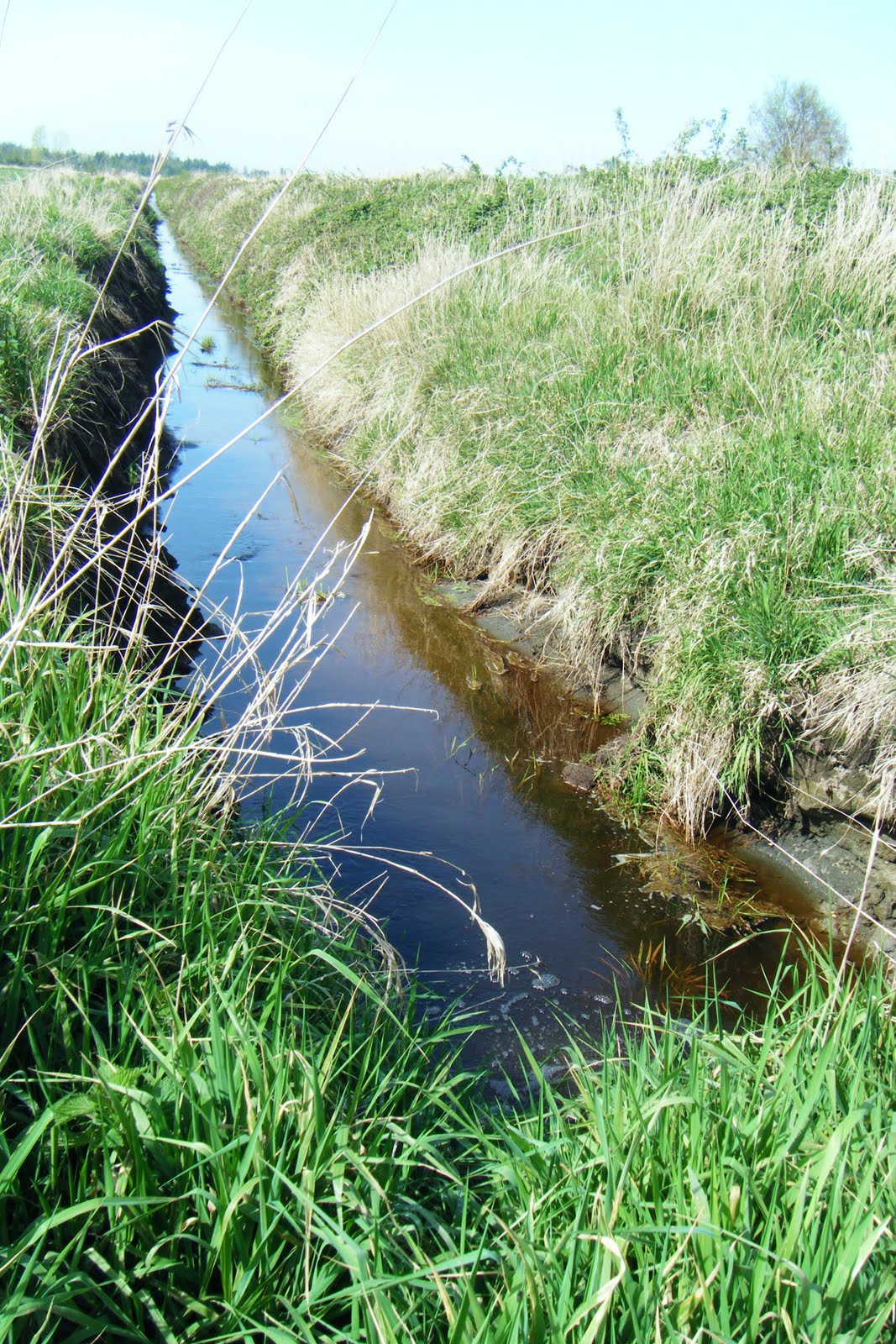 Image result for small irrigation ditches