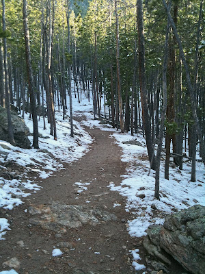 Evergreen Mountain Run, Trail View