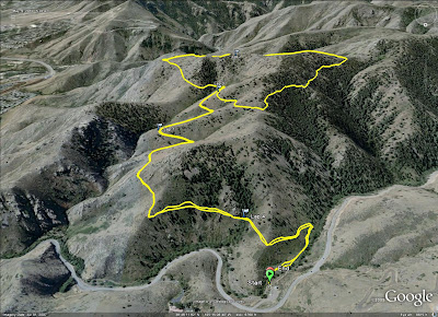 Mount Galbraith GPS Track