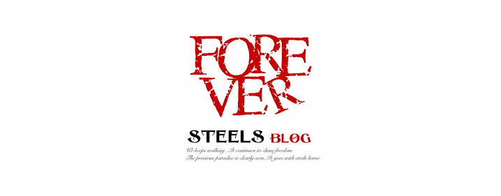 STEELS BLOG