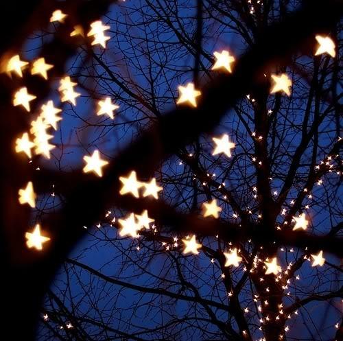 Aku suka raya coz da benda nie sumaa ! lights n fireworkss !