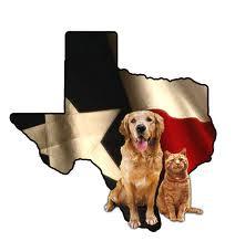 jeg skal til texas!