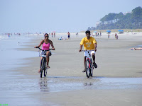 Love birds bicycling at the Hilton Head beach