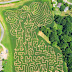 Get Lost in Asheville's Corn Maze
