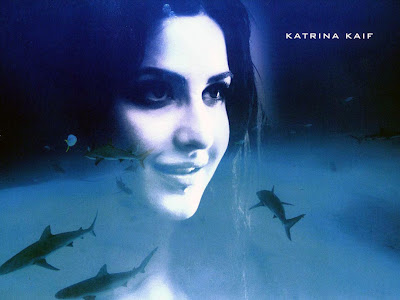 Bollywood Latest Movie 'Blue' Wallpapers, Stills: Katrina Kaif, Akshay Kumar