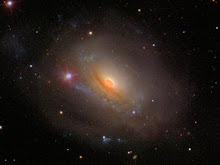 NGC 3169