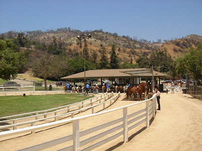 Pony rides at Griffith Park