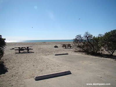 Doheny State beach Camping Sites