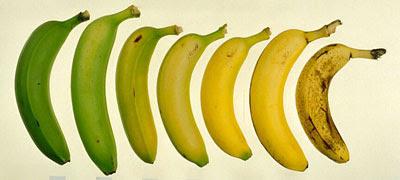 Plátanos y bananas: los boomerangs que se comen